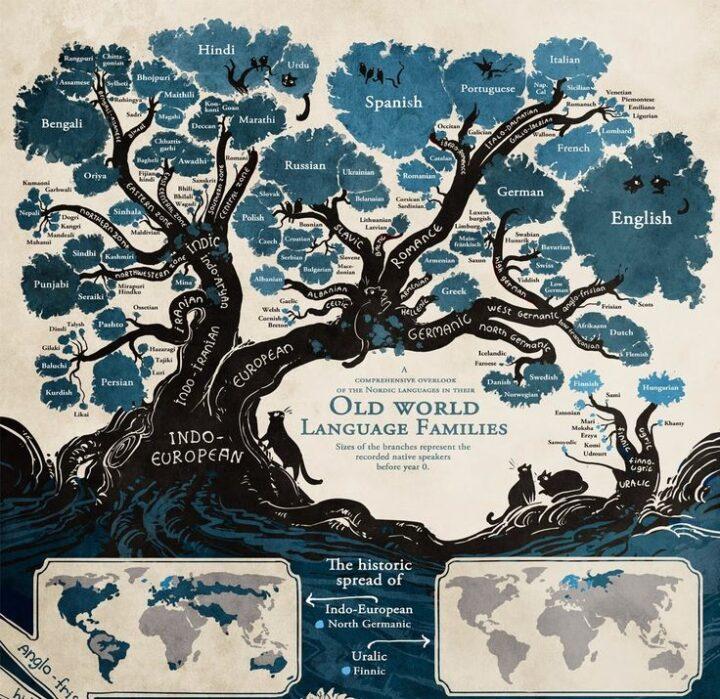 インド・ヨーロッパ言語ツリー